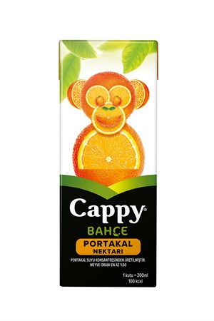 Cappy Portakal 200 ml